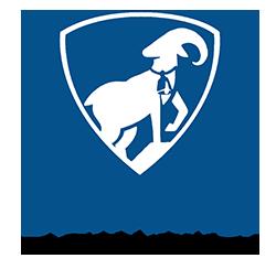Bellwether Restoration